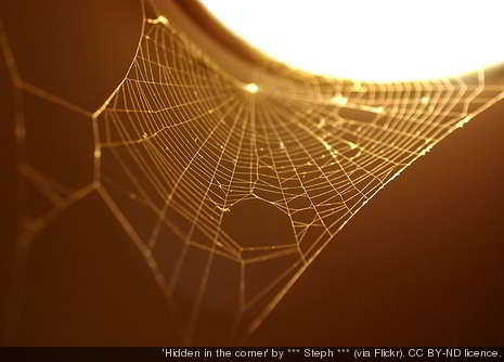 http://headacheandmigrainenews.com/news-images/the-spider-web.jpg