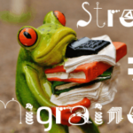"Why You Should Not Accept the ""Stress"" Diagnosis of Migraine"